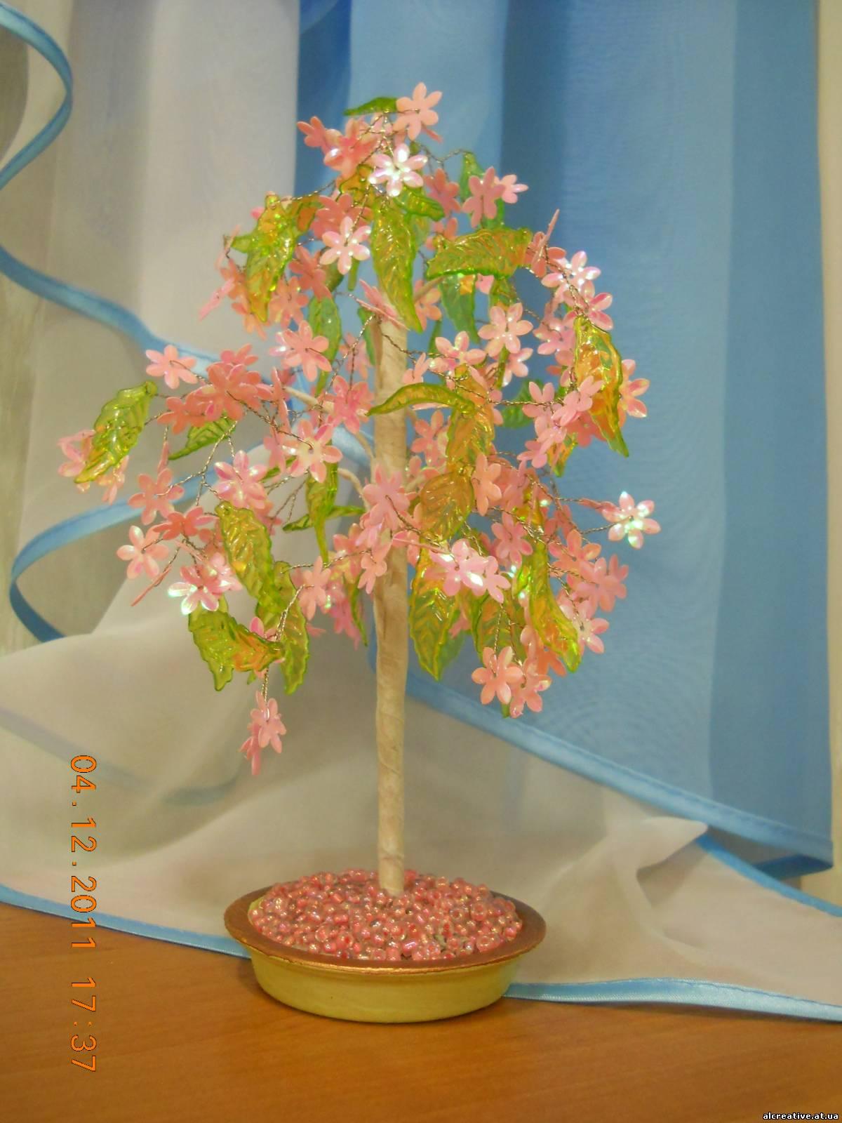 Фото деревья и цветы магнолии - Фото цветов.